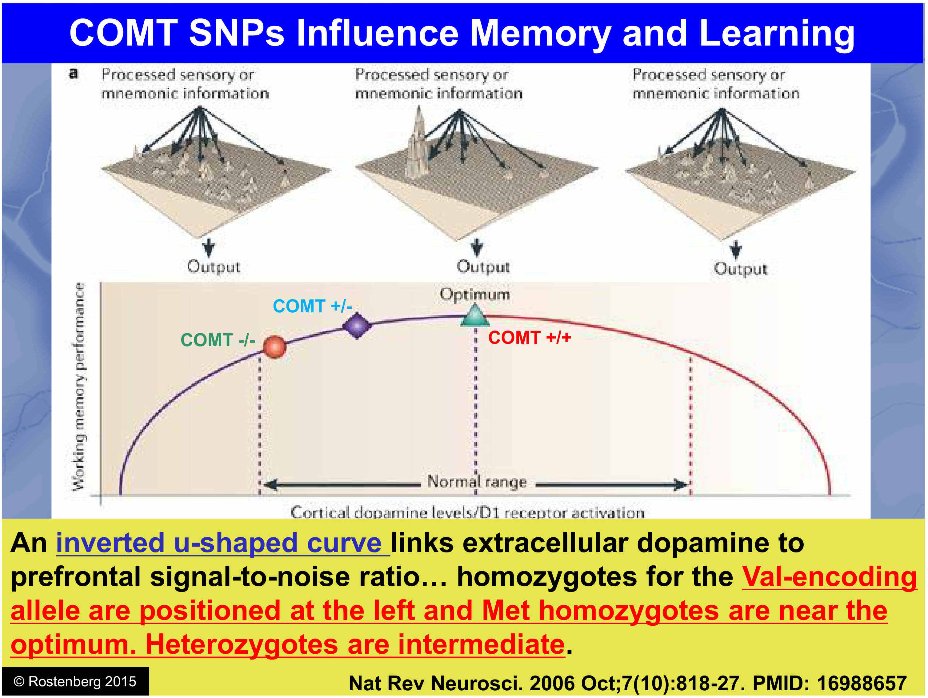 Watch How to Test Dopamine Levels video